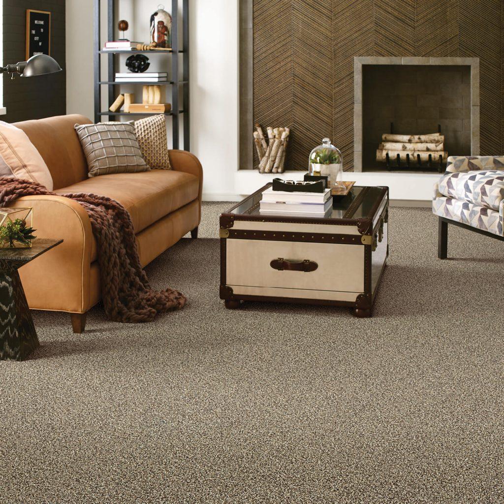 carpet in living room   Flowers Flooring