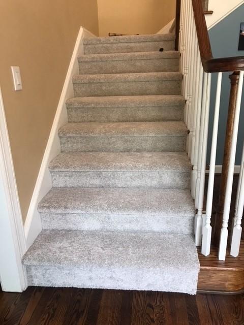 Carpet Flooring Designs | Flowers Flooring
