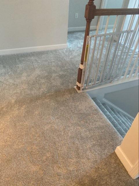 Carpet | Flowers Flooring