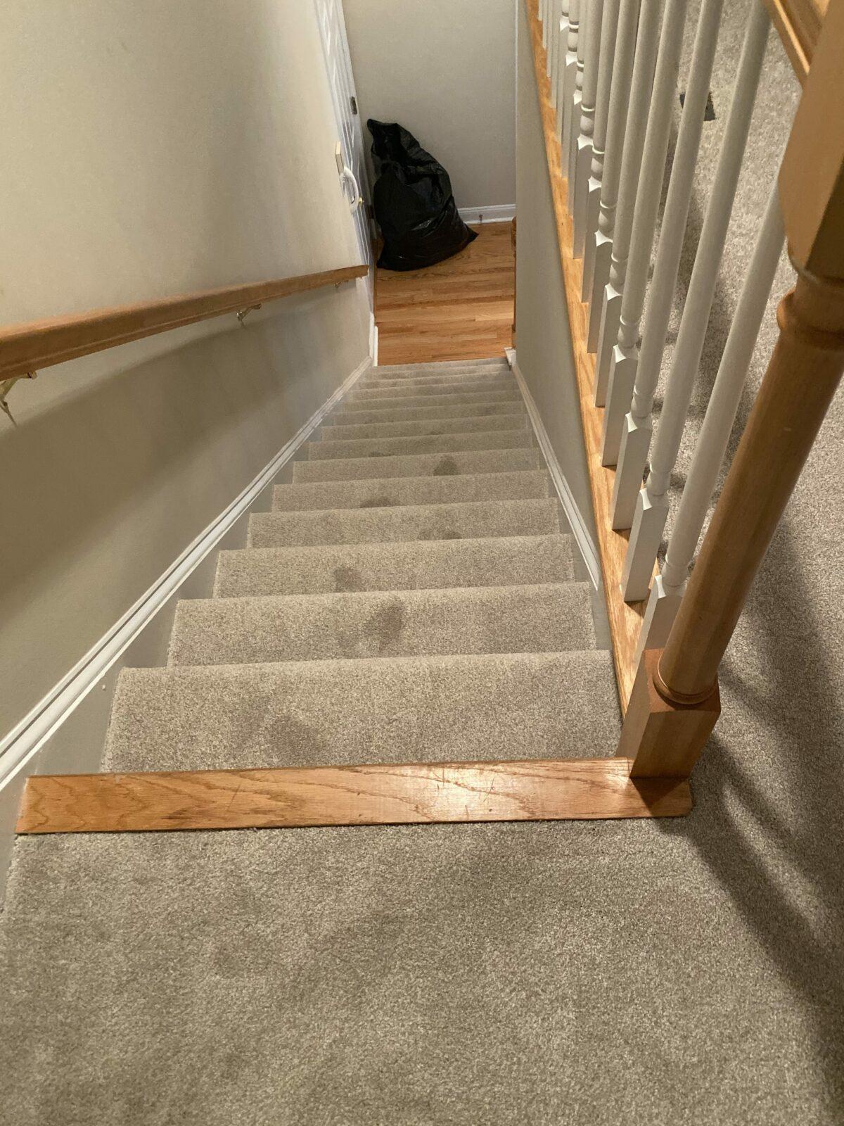 Stairway Carpet flooring | Flowers Flooring