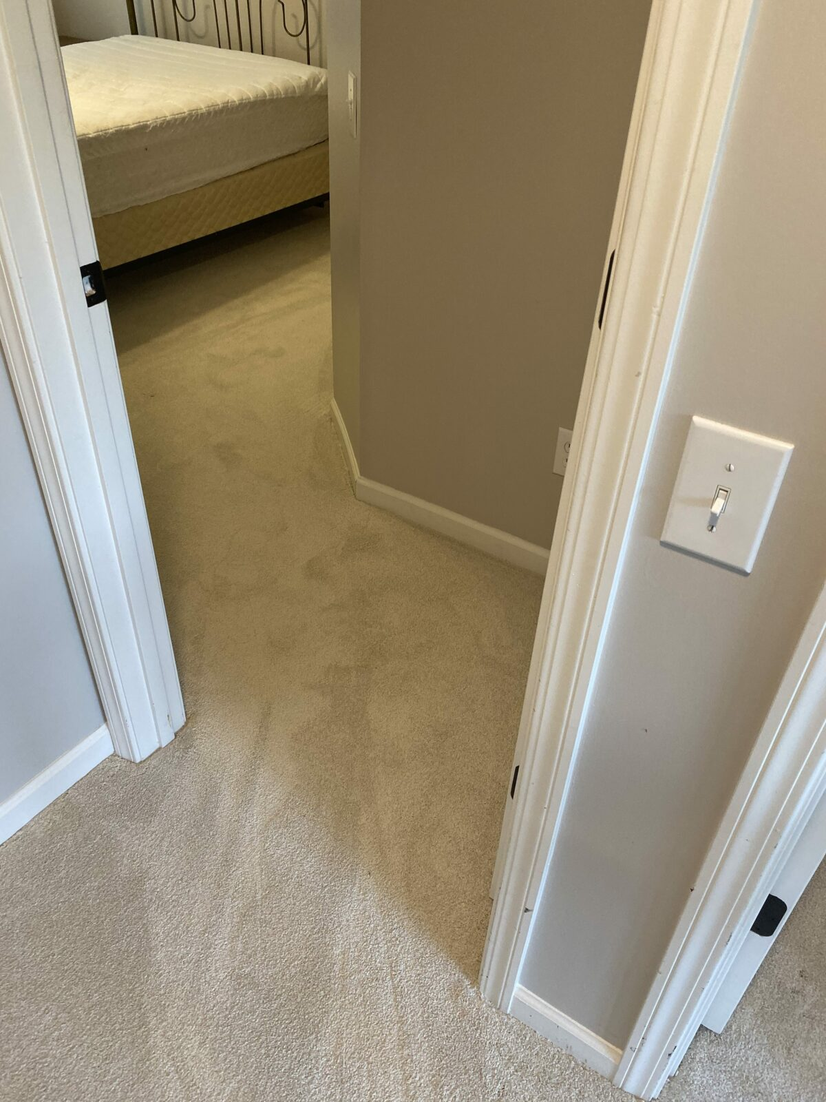 Grey Carpet flooring | Flowers Flooring