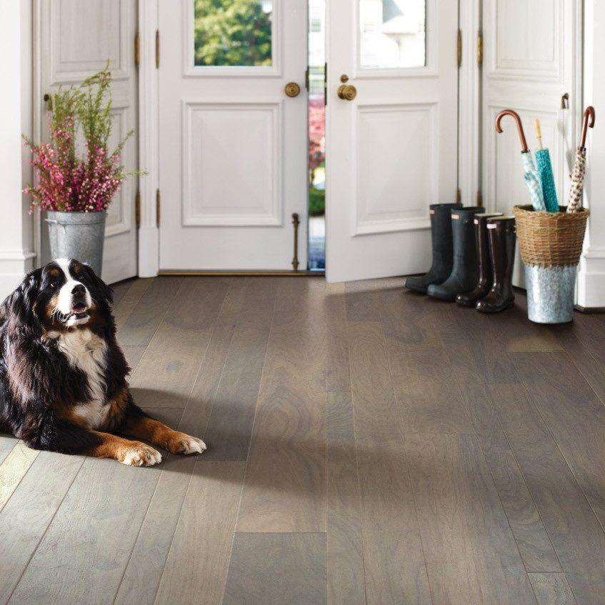 Walnut floor| Flowers Flooring